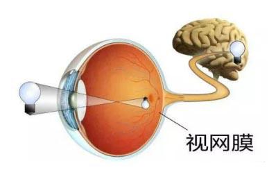昆明哪里可以治视网膜脱落