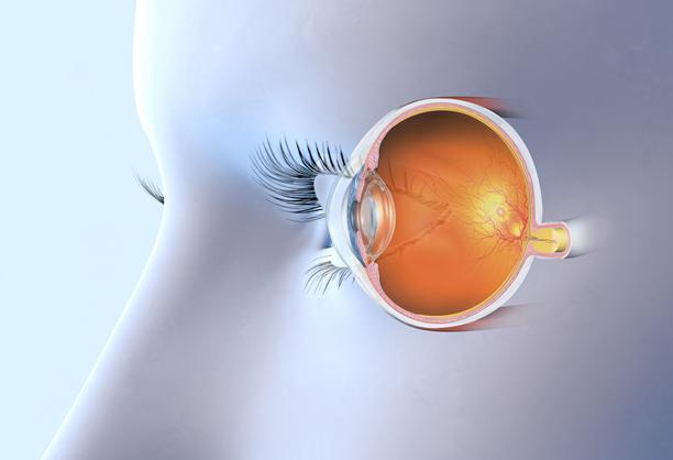 昆明哪里治疗视网膜脱落效果好